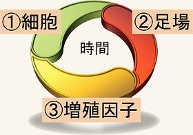 再生の3要素